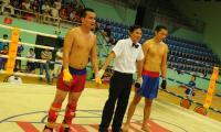 ngoc-tinh-kich-boxing-02.JPG