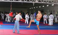 ngoc-tinh-kich-boxing-08.JPG